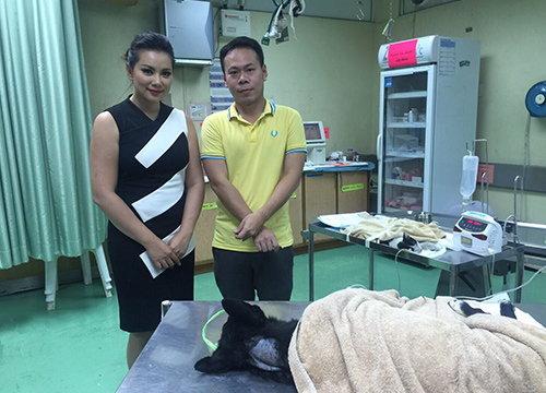 ชาวเน็ตชมบุ๋มปนัดดาช่วยสุนัขป่วยที่กองปราบ