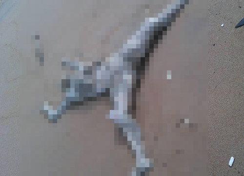 พบศพเกยชายหาดชุมพรคาดตายมาแล้ว1ด.