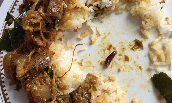 อีกครึ่งตัวอยู่ไหน กินผัดเผ็ดหมูป่า เจอซากกิ้งกืออยู่ในจาน