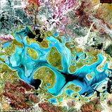 ทะเลสาบคาร์เนกี ออสเตรเลีย