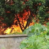 เพลิงไหม้บ้านพักคนงาน โรงงานเฟอร์นิเจอร์ วอด 20 หลัง