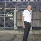 ขนย้ายนกพิราบจากกรุงเทพมหานคร143 ตัว เก็บรักษาด่านกักกันสัตว์อยุธยา