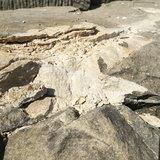 โคราช-คืบหน้ากรณีฟ้าผ่ายอดปราสาทหินพิมาย ล่าสุด ผอ.ศิลปากรที่ 10 ลงพื้นที่สำรวจแล้ว เตรียมบูรณะซ่อมแซม ยันนักท่องเที่ยวสามารถเข้าชมได้ตามปกติ