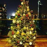 ขวัญ ฉลองคริสต์มาส