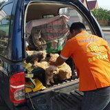 ชนสนั่น! พ่วงกลับรถตัดหน้ากระบะ คนขับสาหัสยังห่วงหมา-แมวฝากกู้ภัยช่วยดูแล