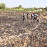 620116ขอนแก่นชายวัย 81 ปี จุดไฟเผาตอซังข้าวถูกไฟคลอกตายกลางทุ่งนา