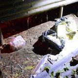 เพชรบูรณ์ เจ้าของร้านขายแตงโมตะลึ่ง พบถุงดำบรรจุยาบ้า 72,720 เม็ด โผล่หลังร้าน