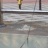 มุกดาหาร น้ำผุดที่โบส์ถเกิดจากน้ำประปารั่ว