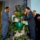 โครงการประเทศสีเขียว