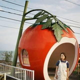 โคนาไก - ญี่ปุ่น