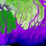 แม่น้ำคงคา อินเดีย