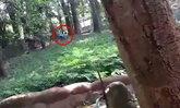 ชายอินเดียทำระทึก แอบปีนเข้ากรงสิงโต จนท.เสี่ยงชีวิตลากตัวออกมา