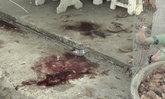 บุกทำร้ายแม่ชีวัย 74 สาหัสคาวัดดัง ลูกศิษย์เผยเคยมีเรื่องกับพระ-ผู้บริหารวัด