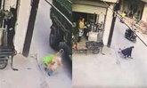 แม่กรี๊ดสติหลุด รถบรรทุกทับหัวลูกดับ หลังจอดรถเข็นไว้ริมถนน