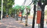 อิตาเลียนไทยฯ อธิบายปมดราม่า ตัดต้นไม้เหี้ยนที่หน้า ม.เกษตร