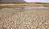 อินเดียเผชิญคลื่นความร้อน อุณหภูมิพุ่ง 50 องศา สังเวยเกือบร้อยศพ