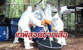 อุทยานฯ พาสื่อไทย-เทศ เทถังดองเสือวัดป่าหลวงตาบัว ยืนยันซากอยู่ครบ
