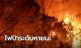 ออสเตรเลียประกาศภาวะฉุกเฉิน 2 รัฐ หลังไฟป่าทวีความรุนแรงถึงขั้นหายนะ