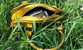 สาวเมาป่วน-ชาวบ้านห่วงจมหายในบ่อน้ำ สุดท้ายนั่งวินกลับ ทิ้งกระเป๋าข้างบ่อ