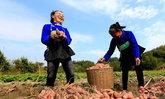 """ต้องจารึก! จีนเผย """"คนจน"""" ลดฮวบใน 6 ปี มุ่งแก้จนหมดประเทศใน 2 ปีข้างหน้า"""