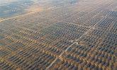 """เริ่มแล้ว อาณาจักร """"พลังงานแสงอาทิตย์"""" กลางทะเลทรายมองโกเลียใน"""
