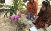 สุดอึ้ง ต้นมะพร้าวออกลูกเป็นกล้วย ชาวบ้านรู้ข่าวแห่ขอหวย