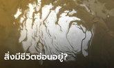 สัญญาณสิ่งมีชีวิต? นักวิทย์อิตาลีเชื่อมีแอ่งเค็มใต้น้ำแข็งขั้วดาวอังคาร