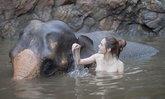 """""""เกรซ กาญจน์เกล้า"""" เผยภาพช็อตอาบน้ำให้ช้าง ทำชาวเน็ตโฟกัสจุดเดียวกัน"""