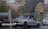 โซเซียลจวกยับ รถกระบะ บรรทุกผักมาล้นคัน ยกล้อโชว์กลางแยกไฟแดง (ชมคลิป)