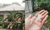 ฝนถล่ม-ลมกระโชกหนัก คนกรุงฮือฮา ลูกเห็บตกหลายพื้นที่
