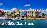 ครอบครัวเศรษฐีมะกัน รับสมัครคู่รักดูแลบ้าน-เกาะส่วนตัว เงินเดือน 300,000 ที่พักฟรี