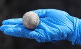 """ตะลึง! อิสราเอลพบ """"ไข่ไก่"""" อายุราว 1,000 ปี ในสภาพสมบูรณ์"""