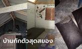 ช็อกซ้ำ 3 สาวหายป่วยโควิด กักตัวต่อ 14 วัน เจอสถานที่สยอง สกปรกยิ่งกว่าบ้านร้าง