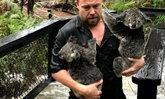 เคราะห์ซ้ำ! ออสเตรเลียเจอน้ำท่วมซัด แม้ไฟยังไม่ดับ กระทบสัตว์เพิ่มอีก
