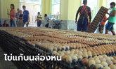 ดราม่าหนักมาก คนจีนแก้บนวัดหลวงพ่อโสธร ไข่ไก่ 2 แสนฟอง หายวับในคืนเดียว