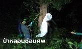 กลิ่นคลุ้งป่าท้ายหมู่บ้าน ตามหาหนุ่มหายตัวหลายวัน พบเป็นศพขึ้นอืดแขวนบนต้นไม้