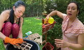 """ความสุขของ """"ตั๊ก บงกช"""" เปิดสวน ปลูกผักเก็บไว้กินเอง อร่อยปลอดภัยไร้สารพิษ"""
