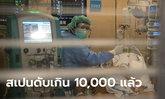 โควิด-19 สเปนเสียชีวิตทะลุ 10,000 แล้ว! หลังดับพรวดเดียว 950 คน รอบ 24 ชั่วโมง
