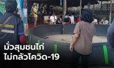 ไม่กลัวโควิด-19 บุกจับเซียนพนัน มั่วสุมในสนามไก่ชน