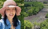 """""""ตั๊ก บงกช"""" เผยภาพมุมสูงไร่เบญจรงคกุล ต้นโกโก้เรียงเป็นทิวแถวรอวันเติบโตมีผลผลิต"""