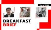 "Sanook คลุกข่าวเช้า 2 ก.ค. 63 ศาลรัฐธรรมนูญคงสถานะ ส.ส. ""สิระ"" กรมปศุสัตว์เตือนอย่าตื่นไข้หวัดหมู G4"