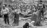 """รำลึก10ปี """"9/11"""" เปิดภาพ สุนัขกู้ภัย ที่ัยังไม่ตาย"""