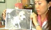 เภสัชสาวร้องเทศบาลวางยาเบื่อสุนัขตายเกลื่อน