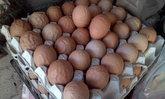 ฮือฮา! ไข่เหี่ยวที่เชียงใหม่ นักวิทย์ยืนยันกินได้