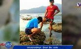 จับคนงานพม่า เหยียบปะการัง จับหอยมือเสือ