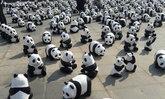 กองทัพหมีแพนด้า1,600ตัวแสดงกลางสนามหลวง