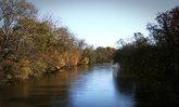 อะมีบากินสมอง เด็ก 11 ขวบเสียชีวิต หลังลงว่ายน้ำที่แม่น้ำ