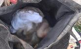 แม่ใจยักษ์จับลูกยัดกระเป๋าทั้งเป็น ขาดอากาศตายศพเน่าคลุ้ง