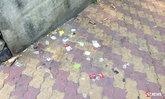 ภาพชวนอึ้ง ถุงยางอนามัยใช้แล้ว ทิ้งเกลื่อนสวนสาธารณะ