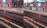 ไล่จับวุ่น น้องหมาวิ่งเตลิดบนรางรถไฟฟ้าบีทีเอส
